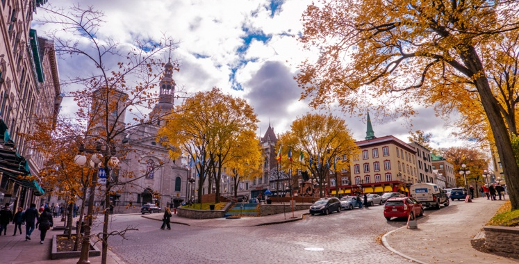 Autumn in Quebec with trees and buildings