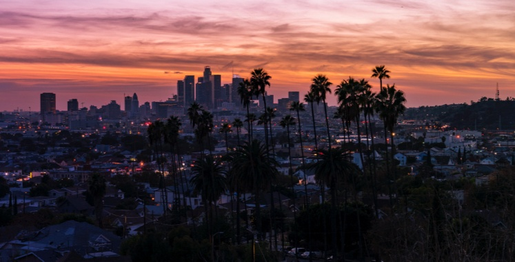 sunset over california skyscrapers with palm trees
