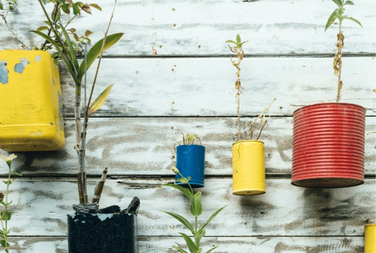 Recyled plant pots from tins and plastic bottles hung on a wall