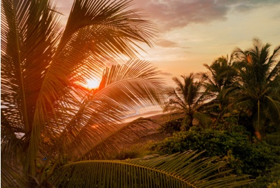How to apply for a Costa Rica student visa